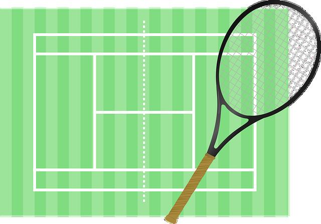 西岡良仁の実家のテニススクールの名前は?場所や評判に料金詳細!